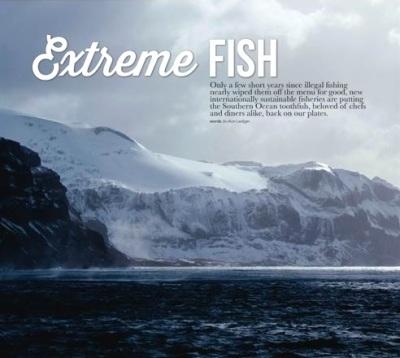 Extreme toothfish